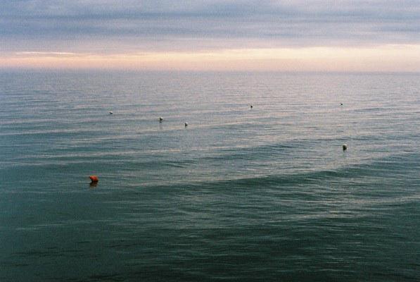 http://ellyclarke.com/files/gimgs/18_northseasea.jpg